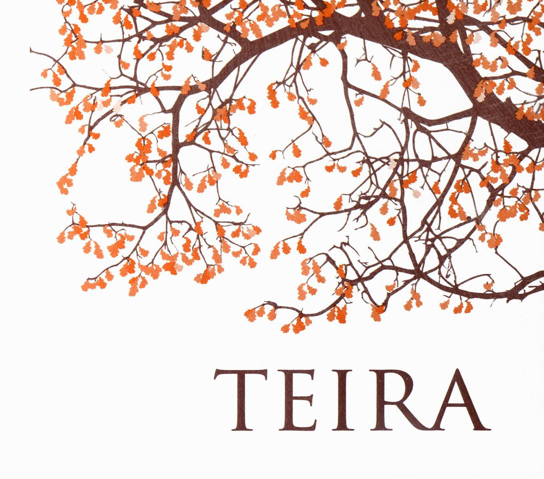 teira wines logo